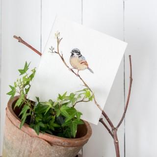 springwatercolorbirdcraftberrybush-6