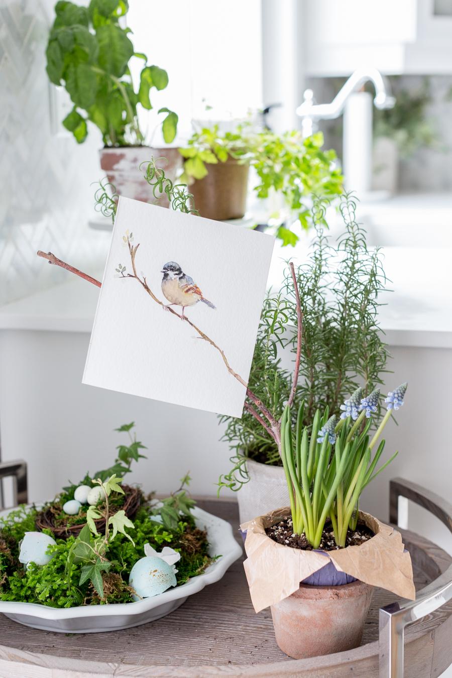 springwatercolorbirdcraftberrybush
