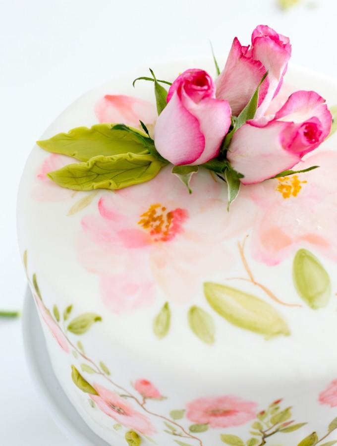 painted fondant cake_
