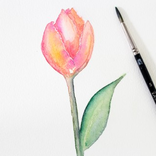 watercolortulip