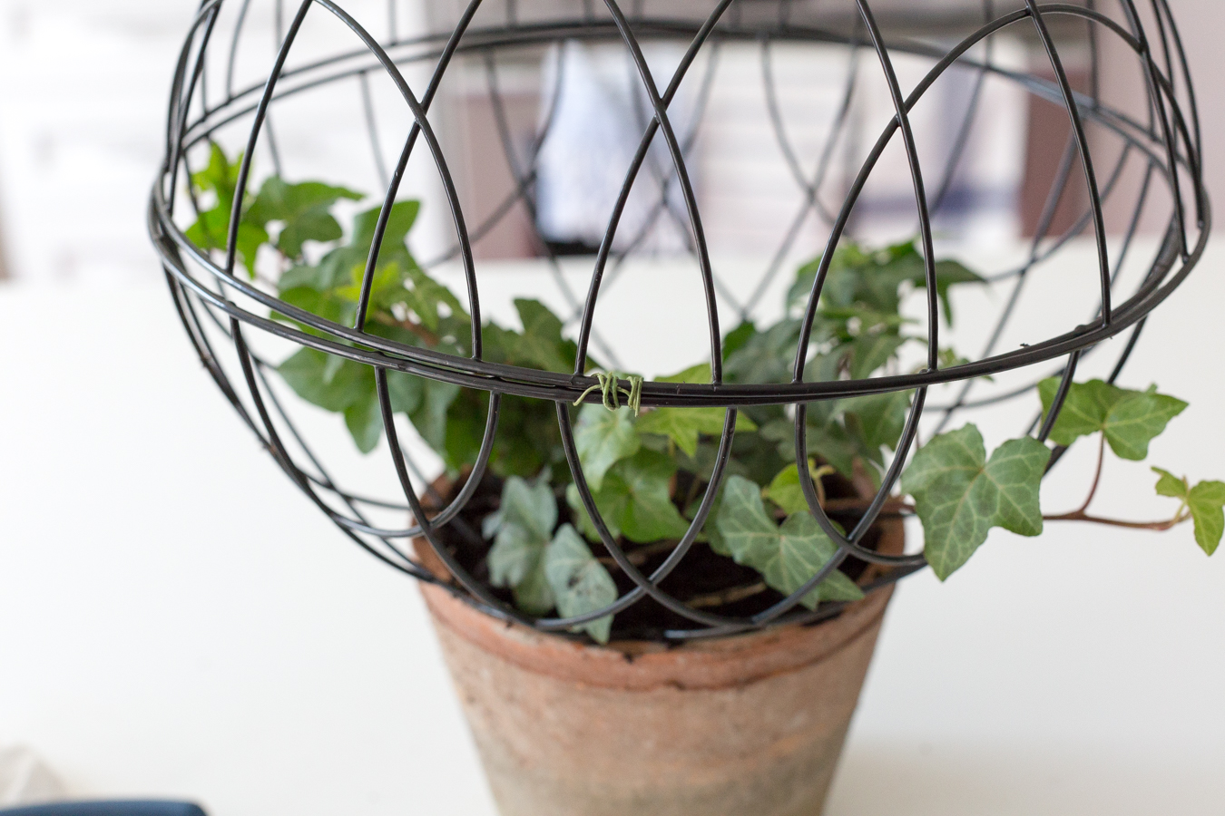 Wire Orb Topiary DIY_-3