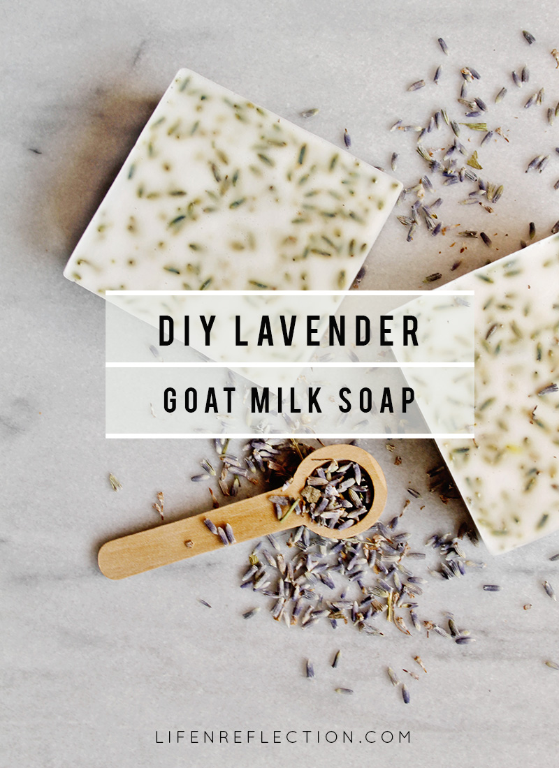 lifenreflection_lavender-hand-soap_1