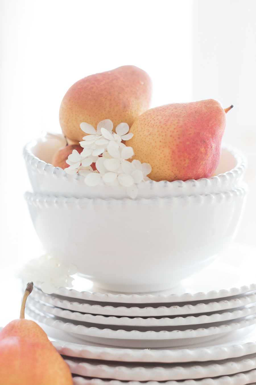 Dinettecraftberrybush.com-11