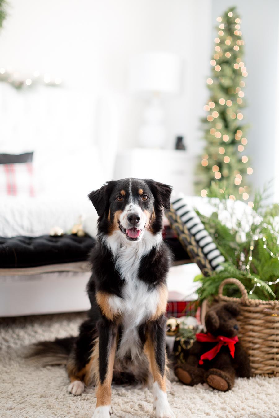 Christmasbedroomcraftberrybush-7