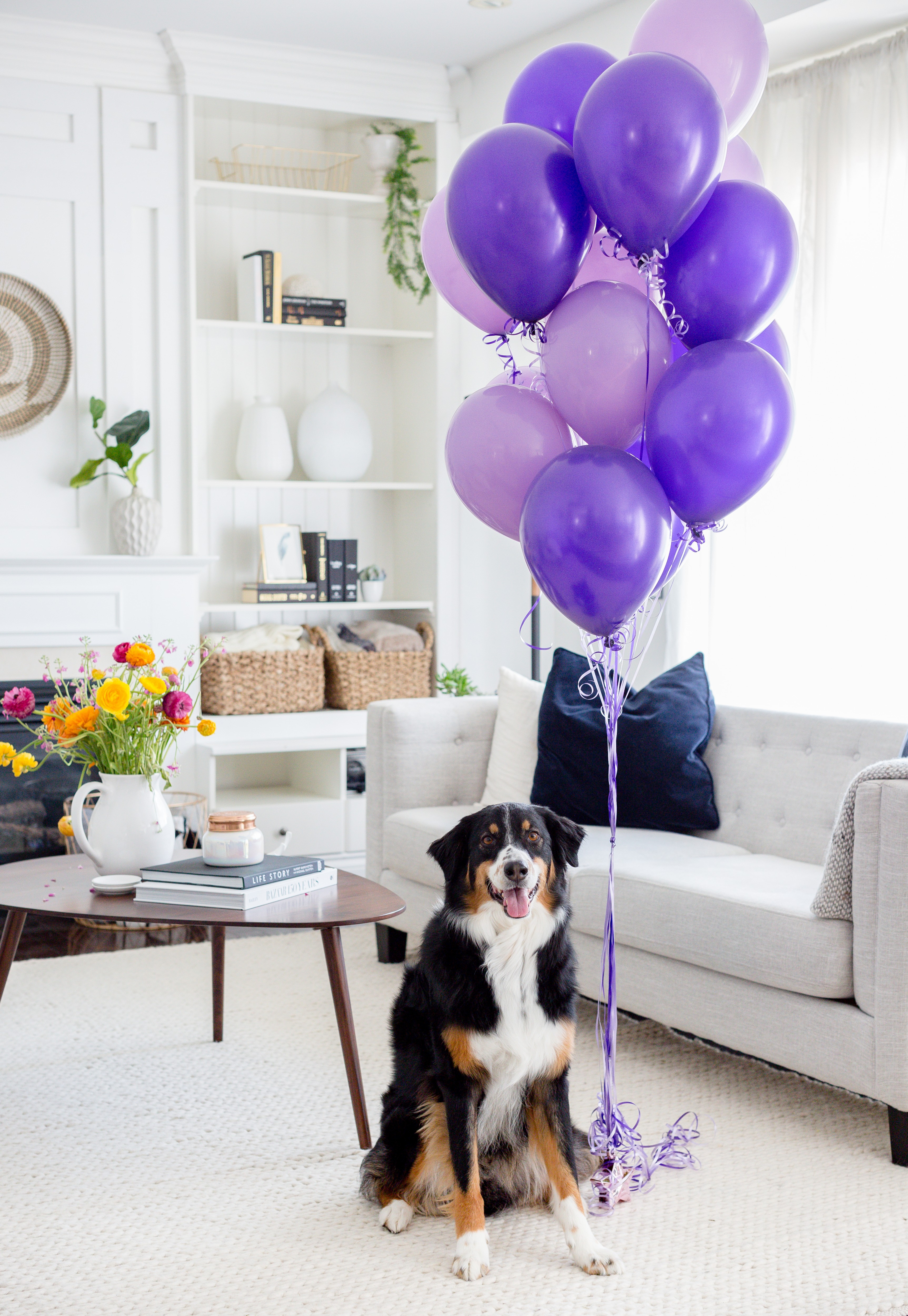 brodypurpleballoons