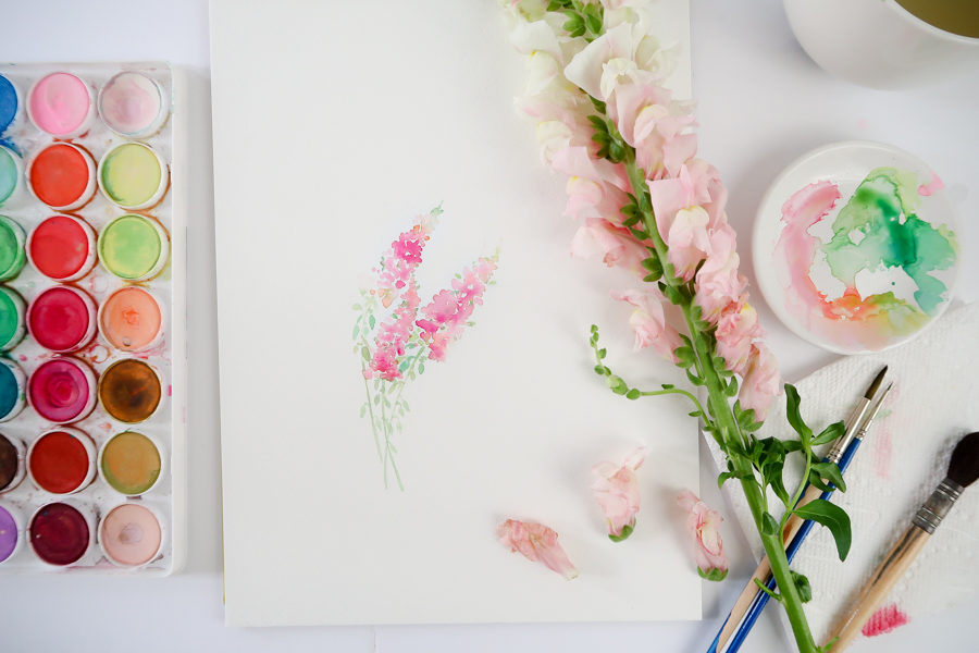 How to paint snapdragons with video and free printable