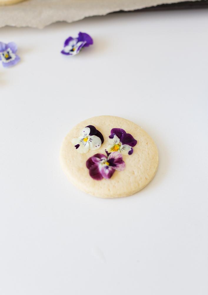 pansiesugarcookiescraftberrybush-3
