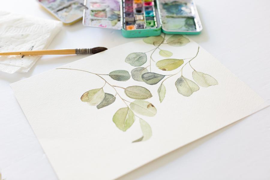 watercoloreucalytus-3