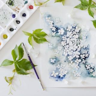 hydrangea watercolorcraftberry bush-2