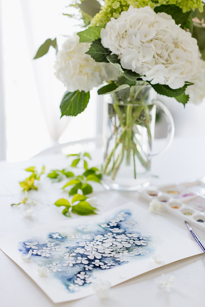 hydrangea watercolorcraftberry bush