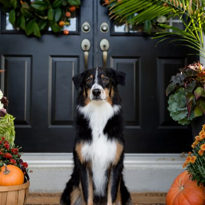 Front Porch Fall Decor Ideas