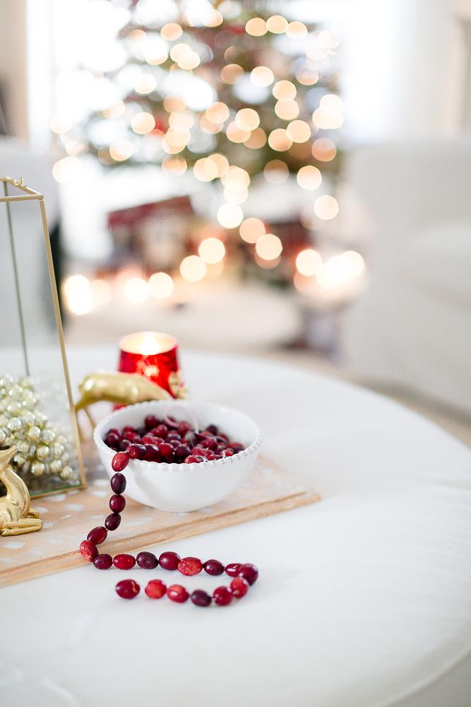 christmas living room craftberrybush-7