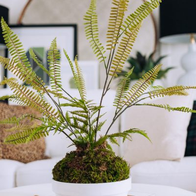 Faux Fern Planter using Dollar Store Items