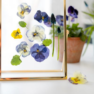 How to dry flowers in seconds