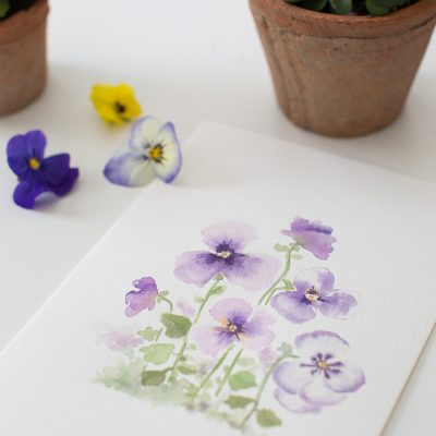 Pretty Watercolor Pansies- Video