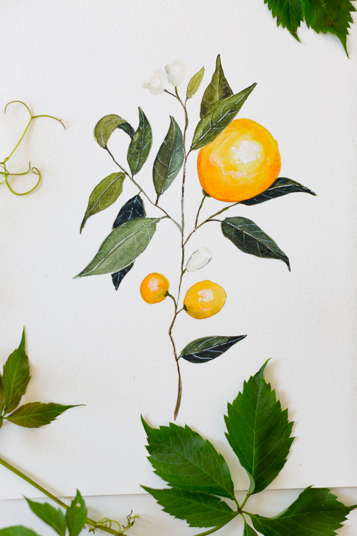 Watercolor Orange Branch Painting Tutorial With Free Printable