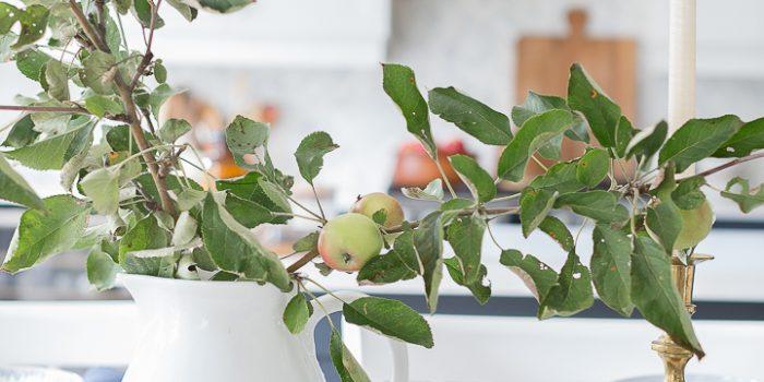 Apple Branch Tablescape