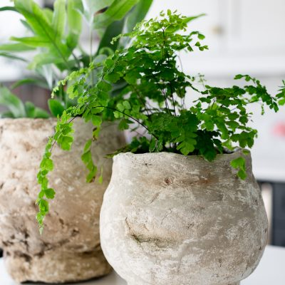 How to make an antique faux concrete planter
