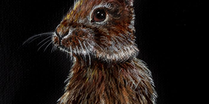 Acrylic Bunny Painting on Black Canvas